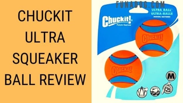 Chuckit Ultra Squeaker Ball Toy Review [2021] Honest Guide
