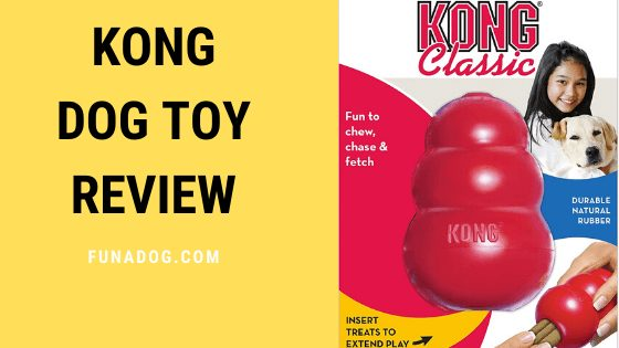 Kong Dog Toy Review | Pros & Cons – Durable Natural Rubber